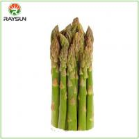 Quality Organic Canned Asparagus for sale
