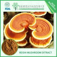 Quality Reishi Extract for sale