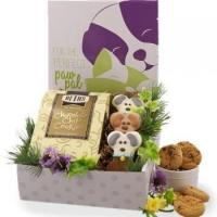 Buy cheap Forever Buddies Holiday Care Package from wholesalers