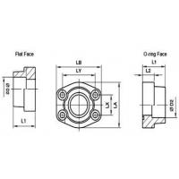 Hydraulics Flanges SAE Socket Weld Flanges - Straight