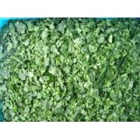 Quality Frozen Spinach for sale