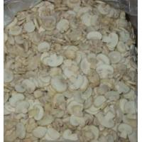 Quality Frozen mushroom for sale