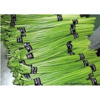 Other Fresh and Frozen Vegetables Product Title:Garlic stem