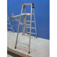 Quality Support assembly of the Yangtze River Delta receptaculitids for sale