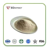 Quality Horseradiah Powder Specification: pure powder for sale