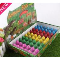 Quality New design Water hatching Growing Dinosaur Egg for sale