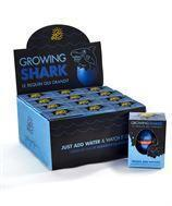 Quality Everyday Gifts Growing Shark Hatch