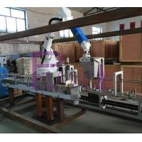 Quality Pallettizer-1 for sale