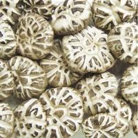 Quality Dried Chinese Cultivated Tea Flower Lentinus Edode Packed in customized bag for sale
