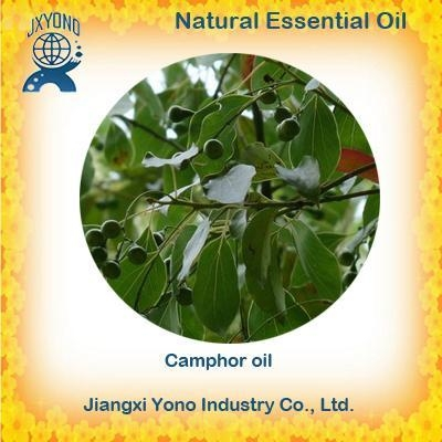 Buy Natural Flavors & Fragrances Camphor oil at wholesale prices