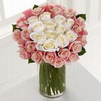 Quality Pink's Spot NO.75 shenzhen flower delivery for sale