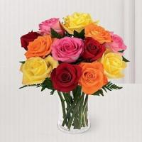 Buy cheap 12 Multi Kisses NO.68 shenzhen flower delivery from wholesalers