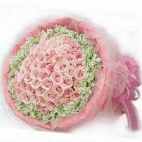 Quality Pink 50 NO.74 shenzhen flower delivery for sale