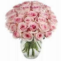 Buy cheap Pink Rose Arrangement NO.85 deliver flower to shenzhen from wholesalers