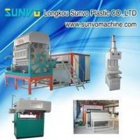 Quality egg tray machine manufacturer for sale