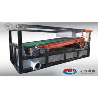 Quality TLGP plate type high gradient magnetic separator for sale