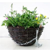 Buy cheap Bedding 30cm Twiggy Round Basket from Wholesalers