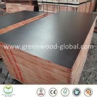 Quality 3mm / 30mm Pine Film Faced Marine Plywood Sheet for sale