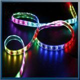 Quality Led Lamps Color Changing LED Rope Light Flash Light LEDs for sale