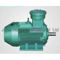 Quality IEC Low-voltage Electric Motors Flameproof Motor ExdIICT4 IE2/Eff1 for sale
