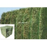 high quality polyester PET strap for alfalfa bale