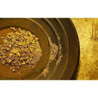 Gold Dust Price Quality Gold Dust Price For Sale