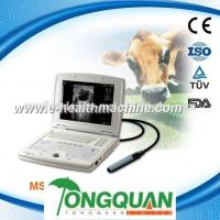 Quality Laptop Pig and Cow pregnancy Ultrasound Scanner MSLVU08H for sale