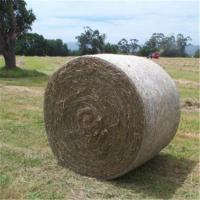 Quality Green Leaf Bale Net Wrap-Plus for sale