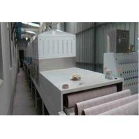 Microwave drying equipment for paper products and wood pulp