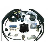 Quality CNG Conversion Kits Australia for 4 Cylinder for Lexus for sale
