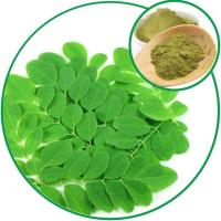 Quality Moringa Leaf Powder, for Diabetes Disease and Lowering the Blood Pressure for sale