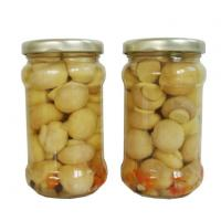 Quality Healthy Canned Foods Mushroom in Jar for sale