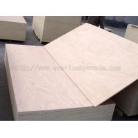 Quality Plywood Okoume Plywood for sale