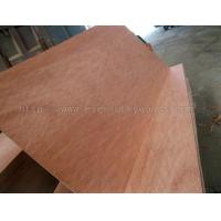 Quality Plywood Bintangor Plywood for sale