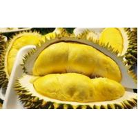 Imported Durian Imported bolster Durian